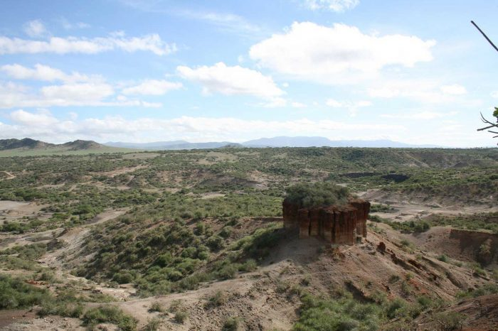 KITULO NATIONAL PARK – DAY TOUR